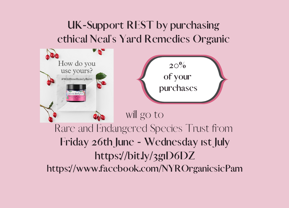 Support REST by buying ethical organic products this weekend
